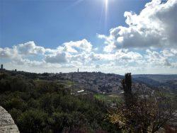 Иерусалим. Вид на Елеонскую гору.