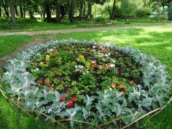 Ясная Поляна Цветник в парке