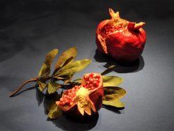 Плоды гранатов