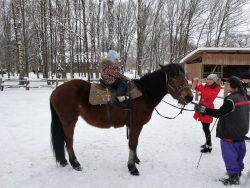 Каков удалец, таков и конь