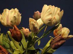 Тюльпаны фарфор