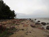 Каменистое побережье в Рое
