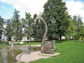 Лебедь в Гулбене