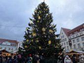 Новогодняя елка на Ратушной площади