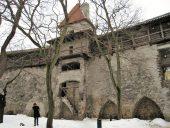 Сад Датского короля Девичья башня