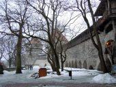 Сад Датского короля зимой