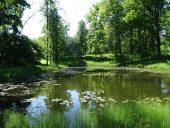 В парке Тригорского