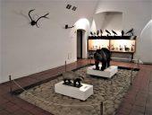 Вестибюль музея Селия