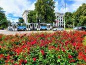 Площадь Роз